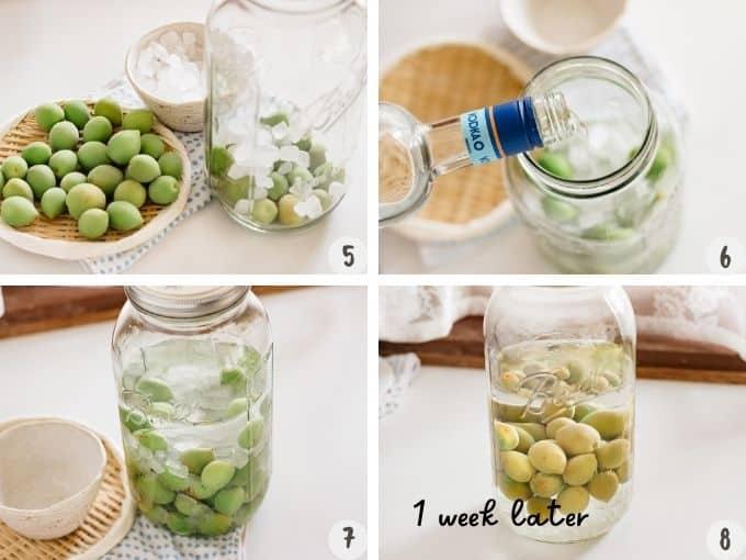 4 photo collage of making umeshu process