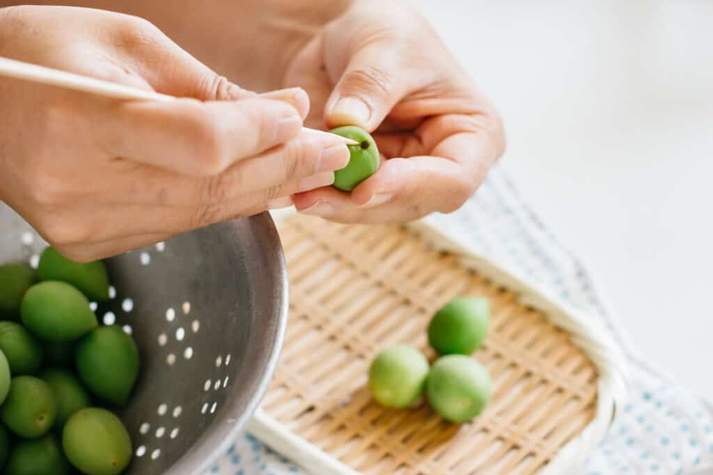 Two hands picking a stem ends of plum fruits