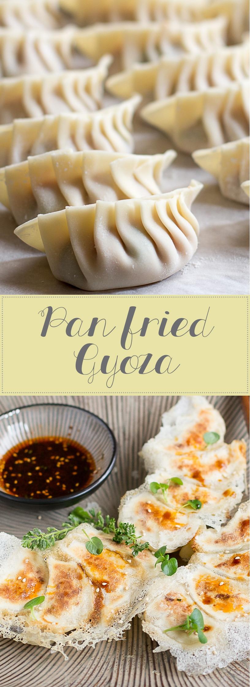 Pan-fried-Gyoza-collage