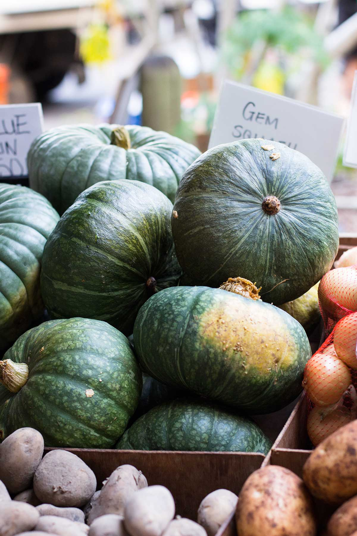 many kabocha squash on a shelf of a market