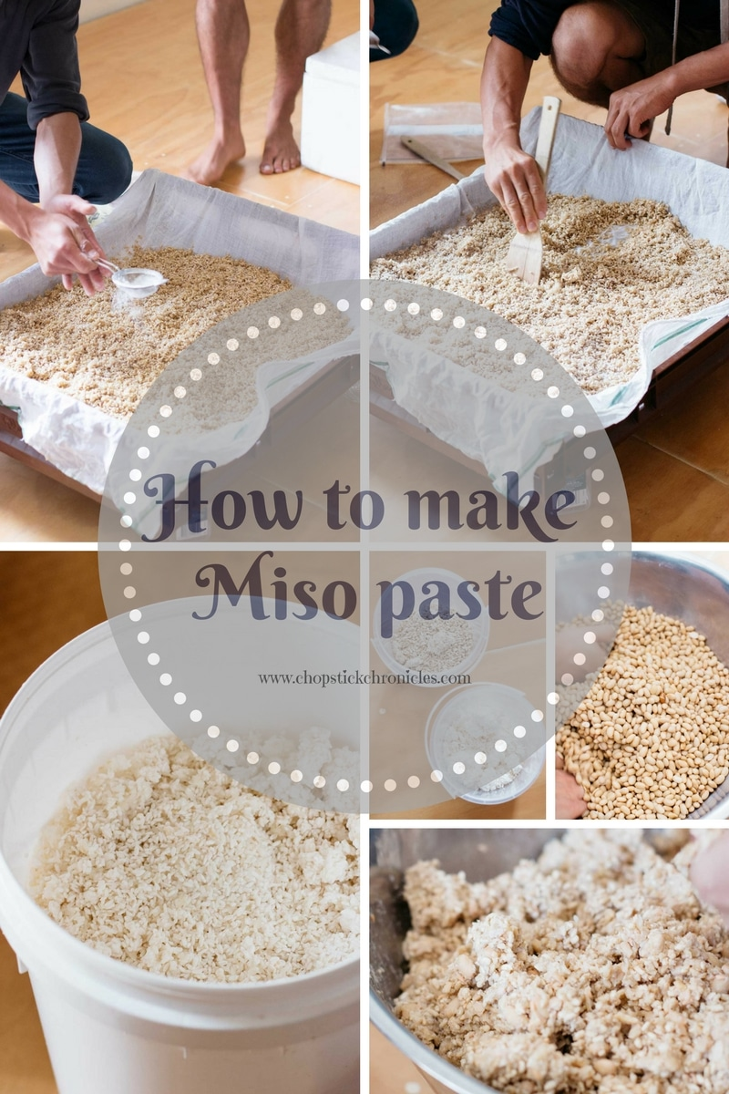 Making miso paste