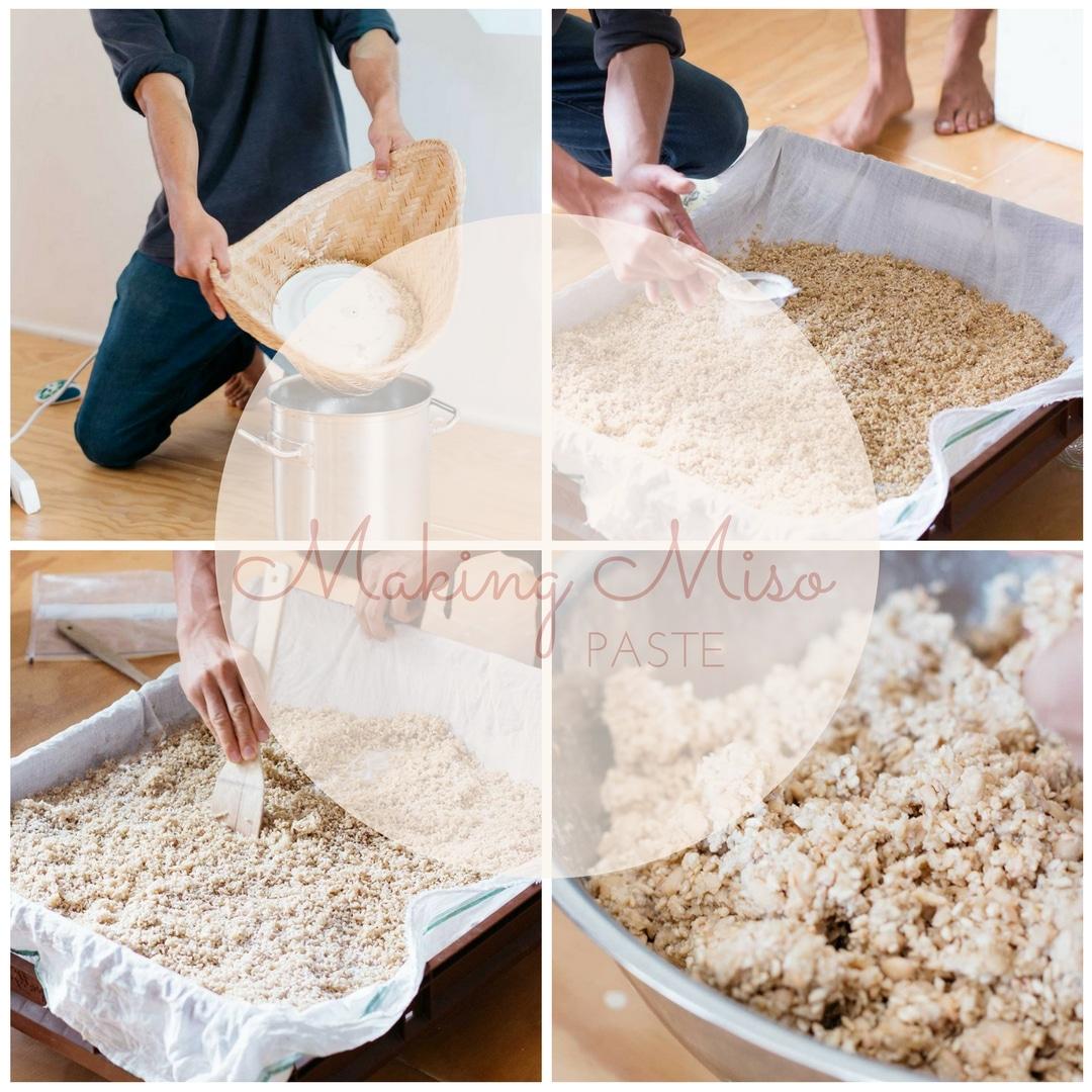 making-miso-paste