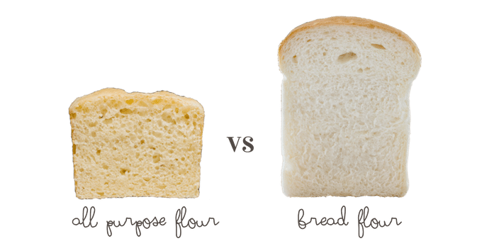 the Shokupan with all purpose flour on left and with bread flour on right
