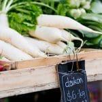 Daikon radish at a local farmers market