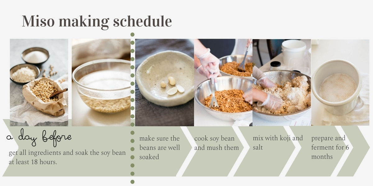 miso making process and schedule infographic