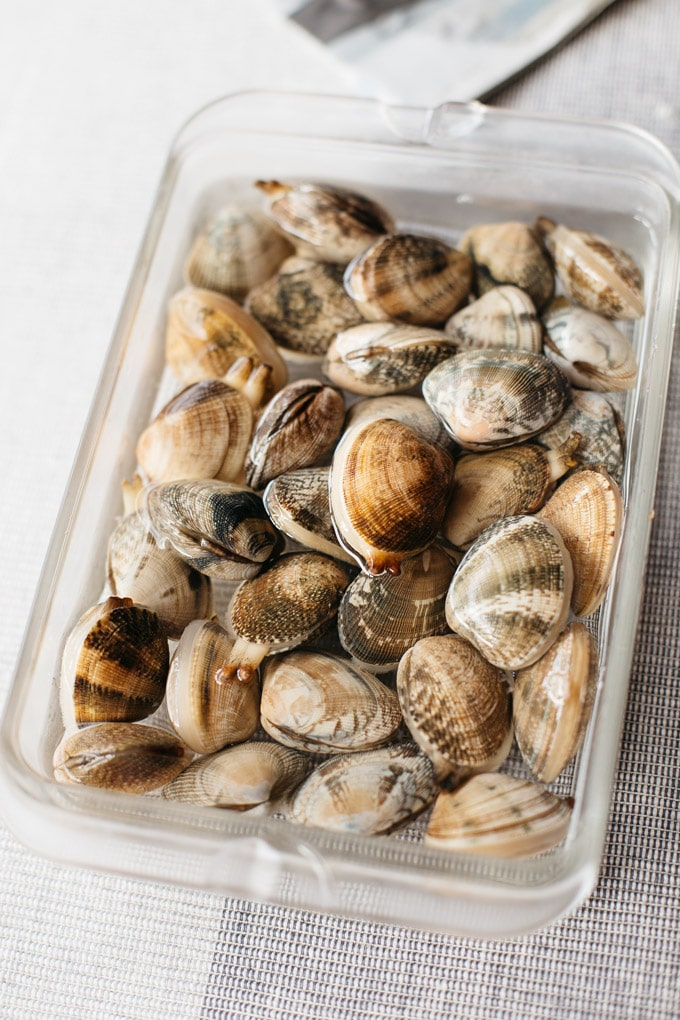 Manila clams in a shallow rectangle glass container