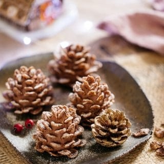 4 edible pine cones and a real pine cone served on a square plate