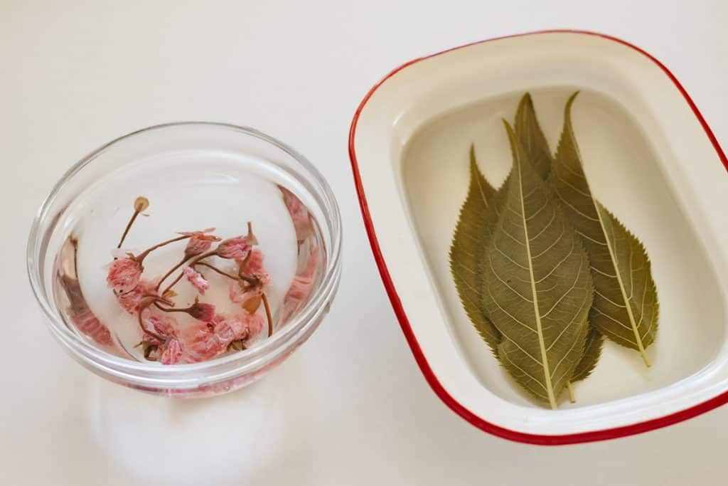 salted sakura flower on the left and leaves on the right soaking in water