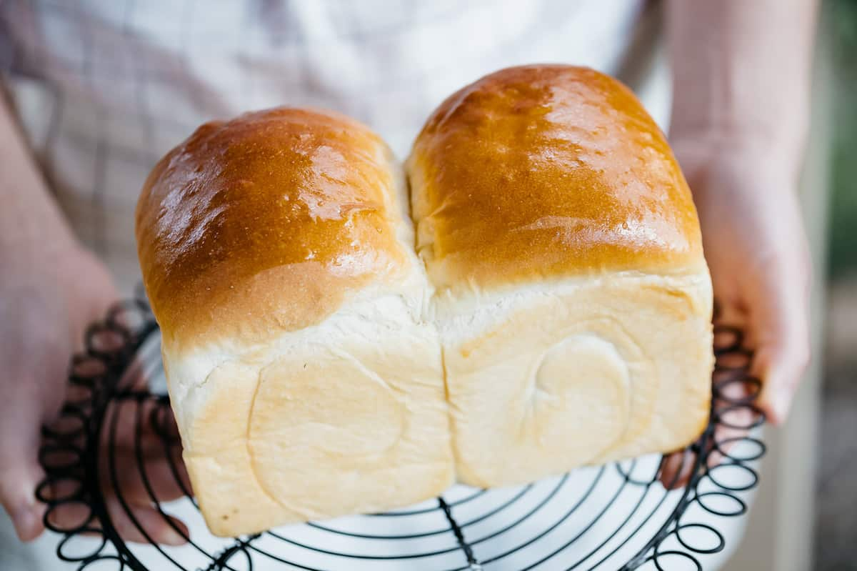 Hands holding a freshly baked Shokupan Japanese milk bread loaf on a cooling wire.