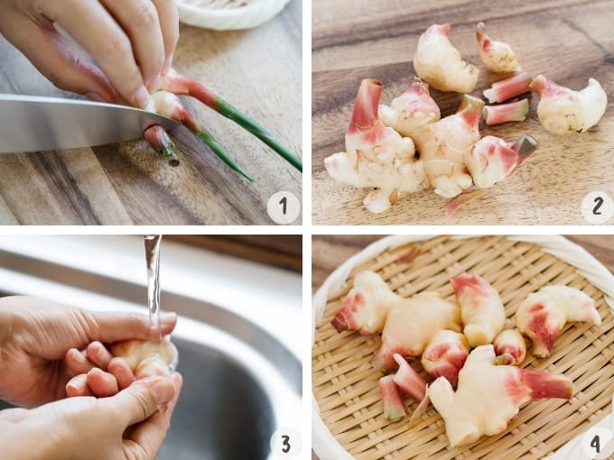 4 photos collage showing preparing new ginger rhizomes for pickling