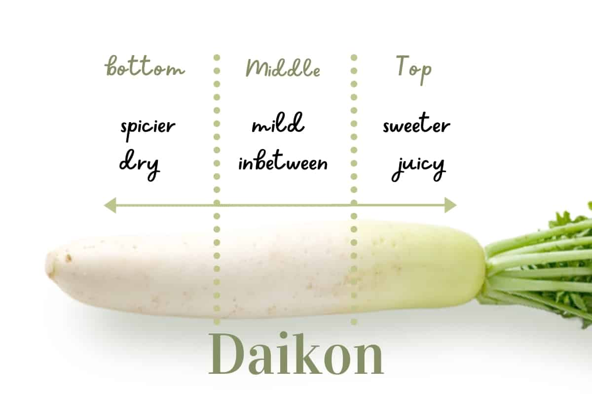 White radish divided by dotted line with text overlay