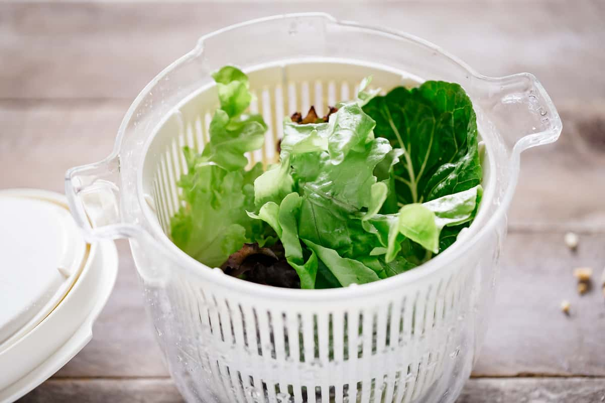green salad leaves in a spinner