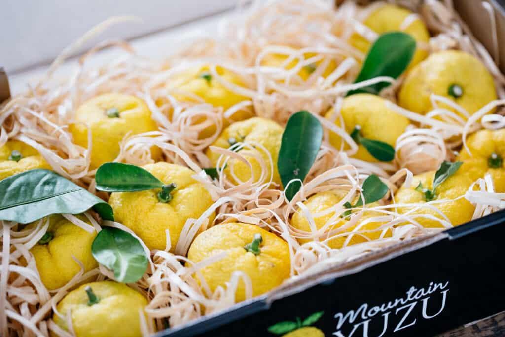 12 yuzu fruits in a commercial cardboard box